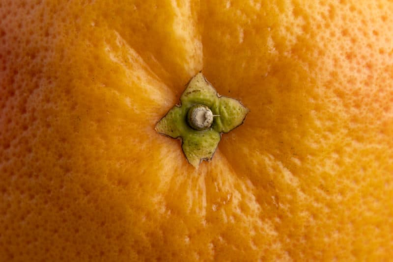 Grapefruit stem end