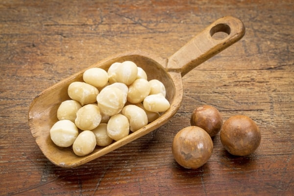Macadamia nuts on a wooden scoop