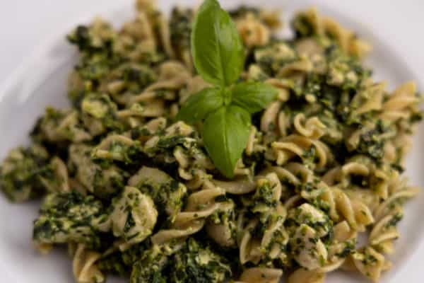 Pasta and chicken with pesto - plated