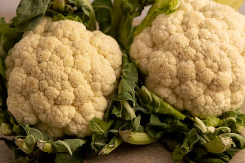 Two cauliflower heads