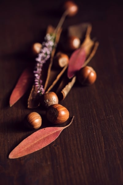 Unshelled hazelnuts and spices