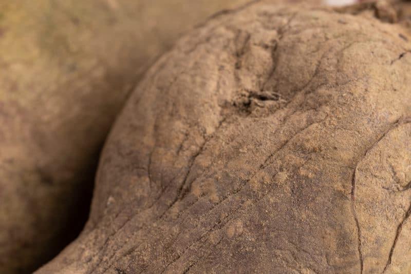 Old beet